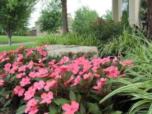 Landscape Designer in Overland Park KS