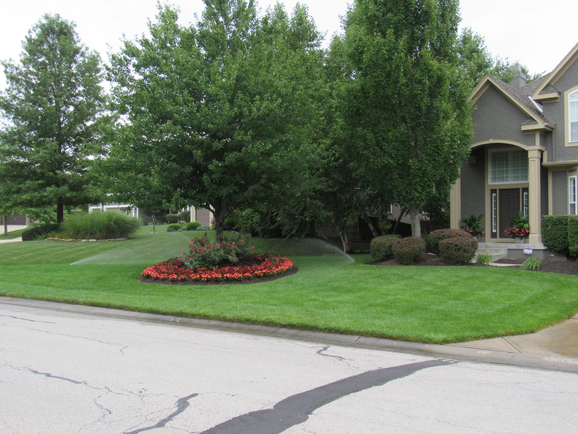 choosing professional lawn care in leawood ks aspen lawn
