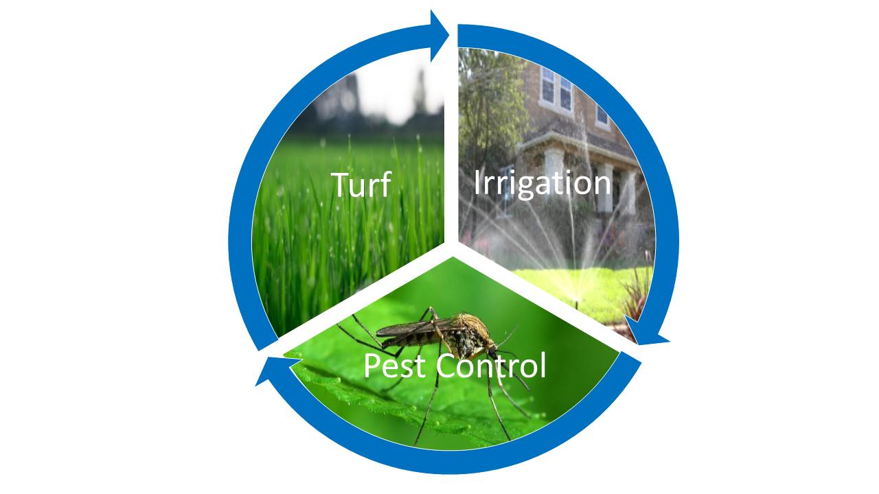 Lawn Fertilizer Treatments Aspen Lawn